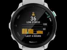 Forerunner 55 GPS Running Smartwatch Price